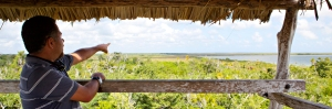 Incredible views of the Sian Kaan biosphere reserve from the look-out tower.