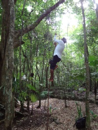 Our guide was a little Tarzan.